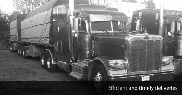 Pro Image Truck Lines | Flatbed Trucking Surrey | Home